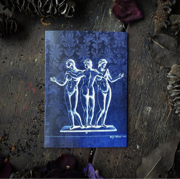 Macabre Anatomical Magic Witching Circle Luxury greeting card.