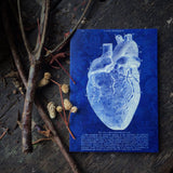 Valentines 2 Pack. Gothic Anatomical Heart, I love you Luxury greeting cards.