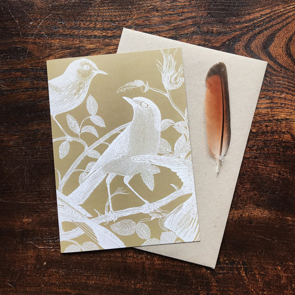 Natural History Vintage Bird Life Illustration Luxury Greeting Card.