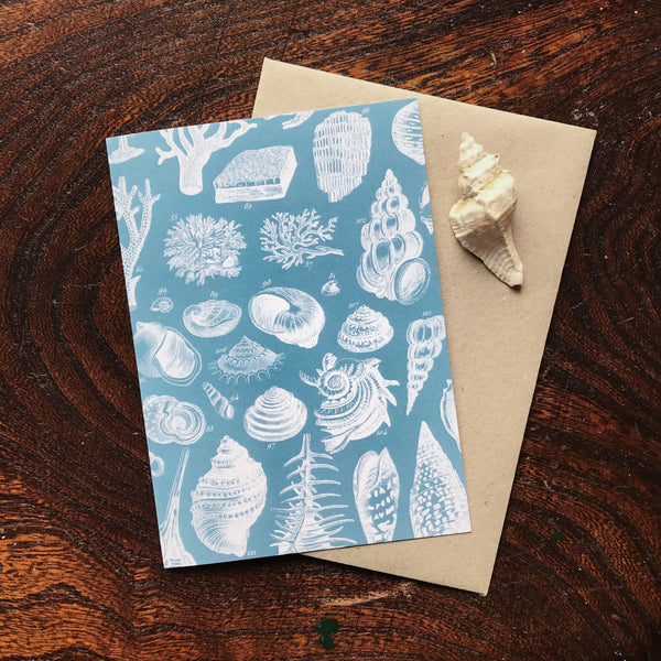 Natural History Vintage Seashell & Coral Illustration Luxury Greeting Card.