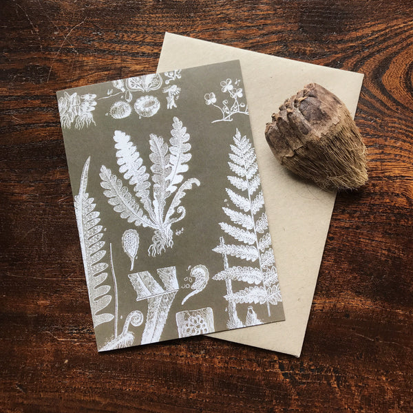 Natural History Vintage Fern Illustration Luxury Greeting Card.