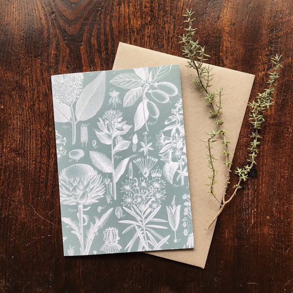 Natural History Vintage Botanical Flower Luxury Greeting Card.