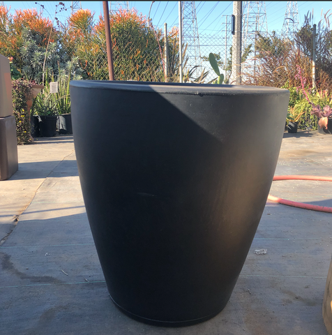 Black Violeta 55 Pot