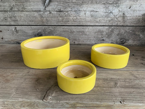 Arnold Glazed Low Cylinder Bowl Yellow