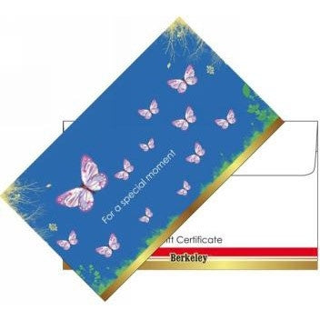 Matching Envelope For Gift Certificate 50ct EN104
