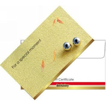 Matching Envelope For Gift Certificate 50ct EN105