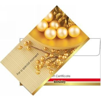 Matching Envelope For Gift Certificate 50ct EN106