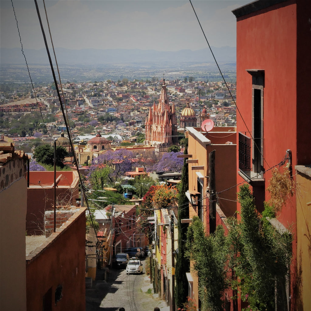 Learning in San Miguel de Allende