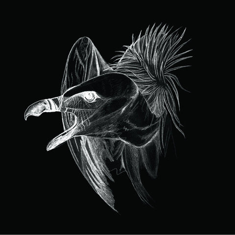 Buried at Sea - Migration CD