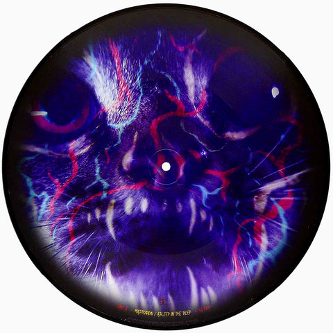 Mastodon - Asleep in the Deep LP Vinyl (Picture Disc)