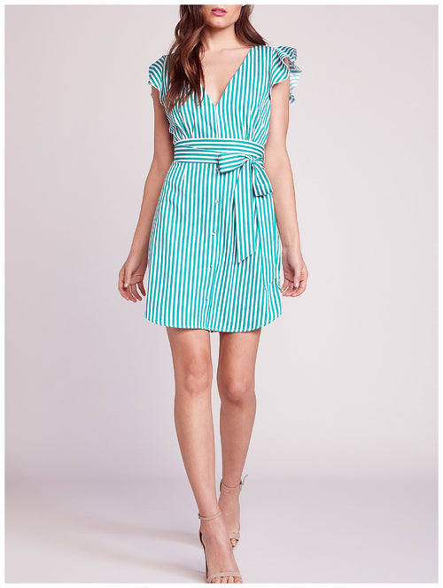 BB Dakota Peppermint Shirt Dress