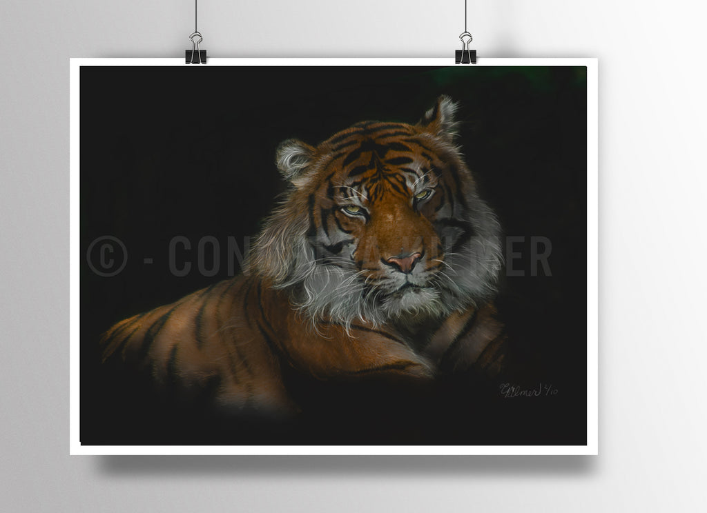 Tiger Poster - Big Cat Print - Tiger Art - Rebels and Roses Boutique