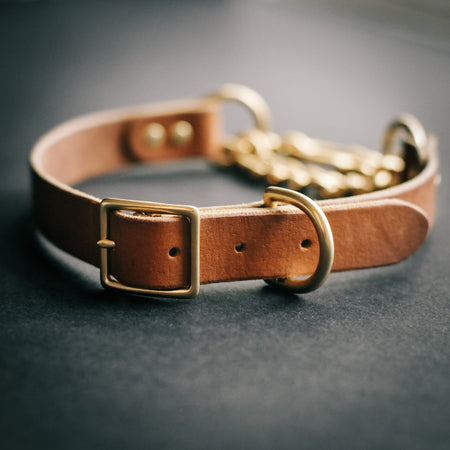 Leather Chain Martingale Collar