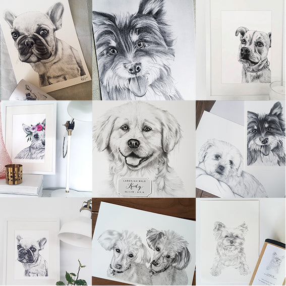 Pet Portrait Gallery