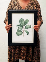 Fiddle Fig Leaf Watercolour art print