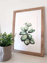 ART PRINTS Fiddle Fig Leaf Watercolour
