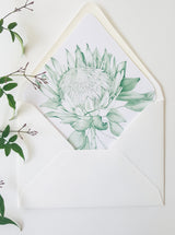 Protea Envelope liner, in green. Hand drawn, envelope template