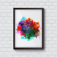 Colourful parrot design   Wall Frames