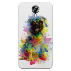 Colours splashed pug    Micromax Canvas Xpress 2 hard plastic printed back cover