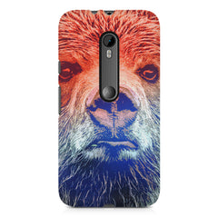 Zoomed Bear Design  Moto X play hard plastic printed back cover