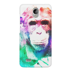 Colourful Monkey portrait Vivo Y21L hard plastic printed back cover