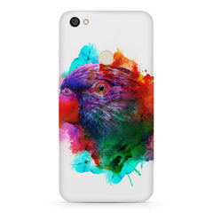 Colourful parrot design Redmi 5 hard plastic printed back cover.