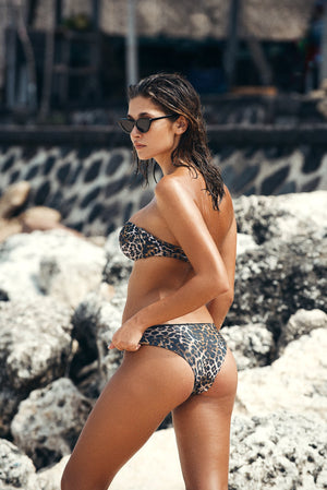 Amore + Sorvete - Mimosa Bottom in Leopard-Amore + Sorvete-Nomads Cove