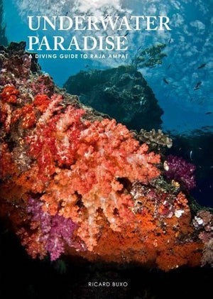 Underwater Paradise: a Diving Guide to Raja Ampat