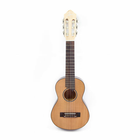 Alvarado Travel Guitar