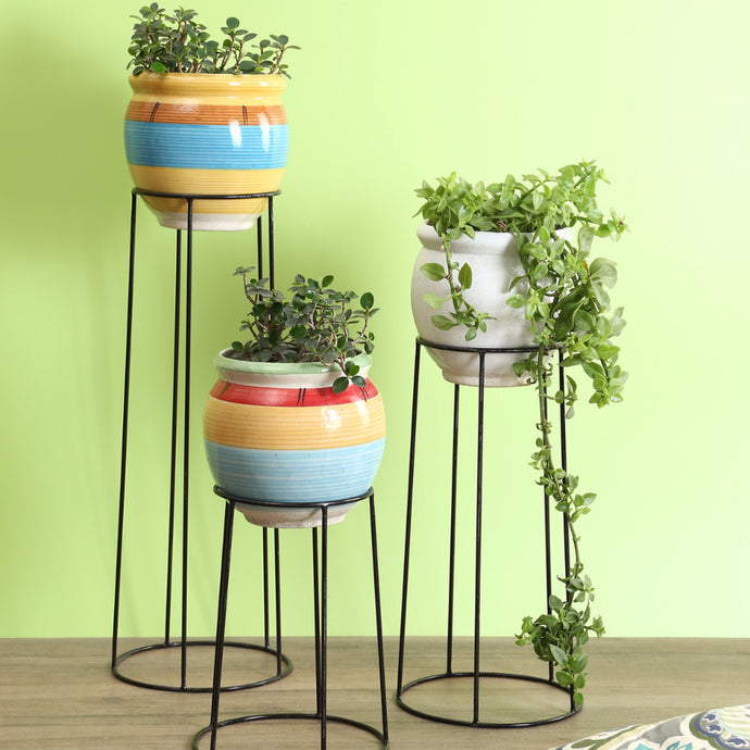 Stand Tall Planters