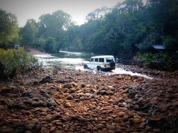 Adventure Jeep Safari to Dudhsagar Waterfall (Goa): Stay in Deluxe Eco-cottage with All Meals (Veg/Non-Veg), Dudhsagar Visit via Bhagwan Mahaveer Sanctuary & Crossing 3 Rivers, Barbecue, Fish Pedicure, Campfire & More!