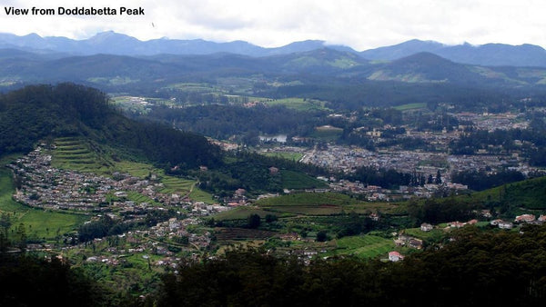 Ooty (queen of hill stations):- 4Nights / 5Days: Stay in 3 Star Hotel + Ooty-Coonoor Sightseeing  & More!