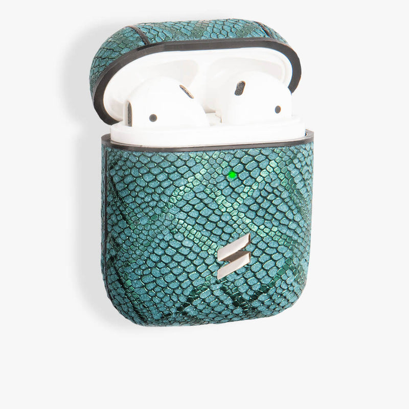 AirPods Case Paris Green