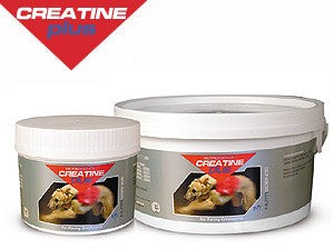 Greyhound Creatine Plus Powder 400 g