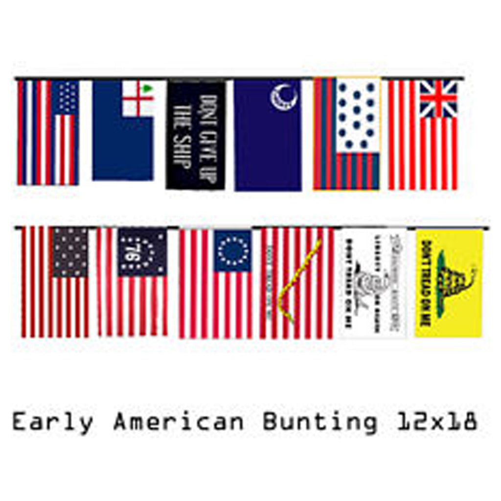 "12""x18"" Historical Flag Bunting"