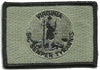 Virginia - Tactical State Patch