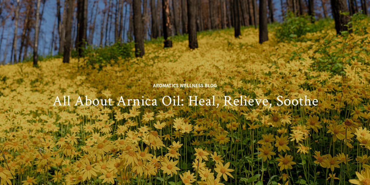 All About Arnica Oil: Heal, Relieve, Soothe
