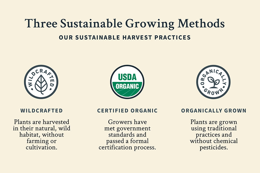 Three sustainable growing methods