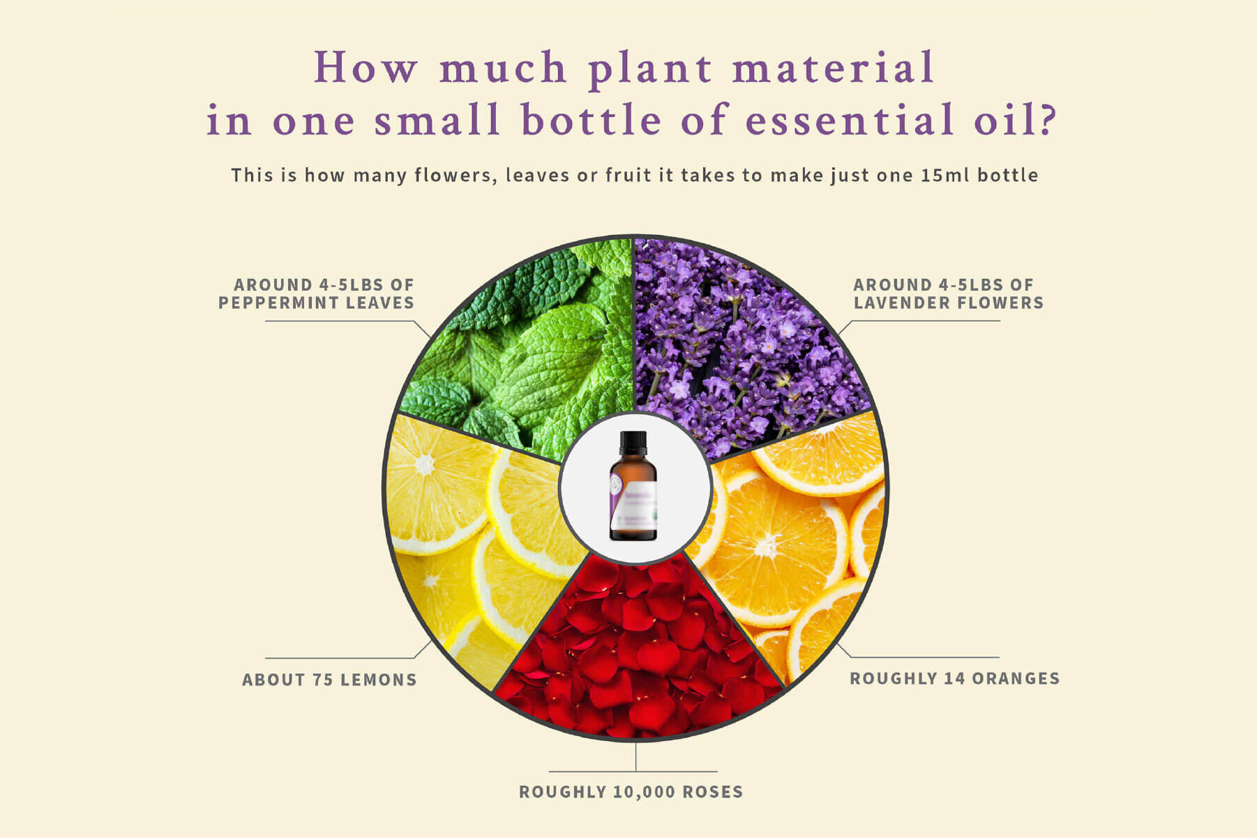 how much plant material in one small bottle of essential oil