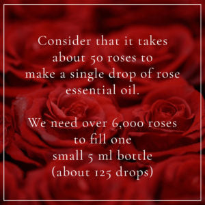 consider it takes about 50 roses to make a single drop of rose essential oil
