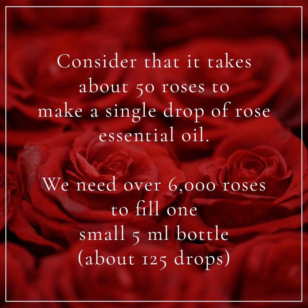 roses facts
