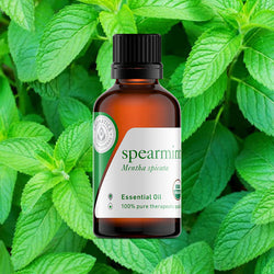 essential oils for st. patrick's day spearmint oil