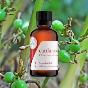 13 Essential Oils for Seasonal Affective Disorder cardamom oil