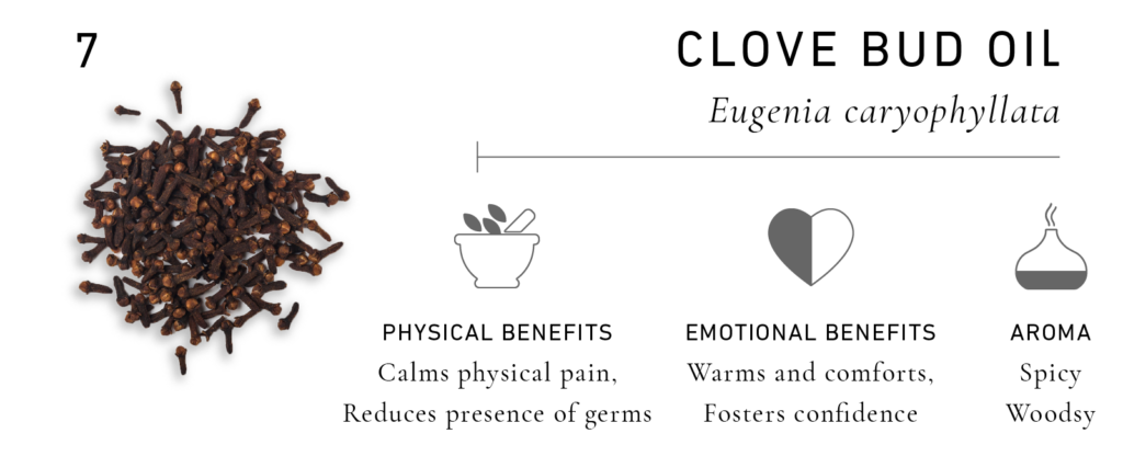 Essential Oils for Men: Clove Bud