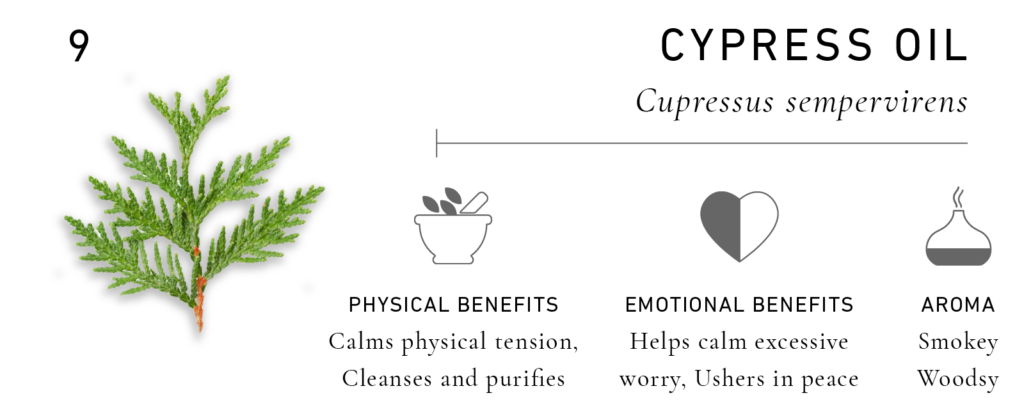 Essential Oils for Men: Cypress