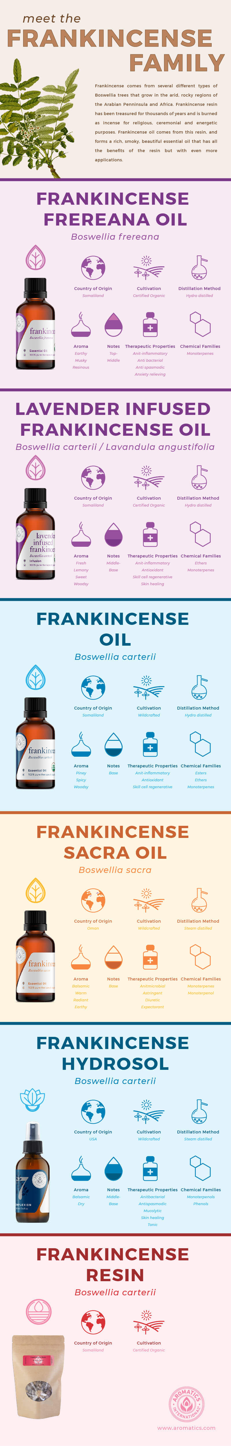 what is frankincense infographic