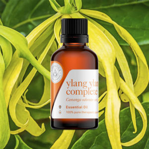 Essential Oils for Valentine's Day ylang ylang oil