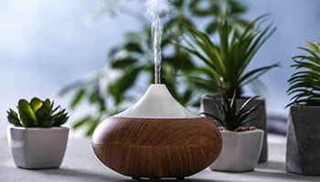 Diffuser Bug Repellent for Outdoor Spaces