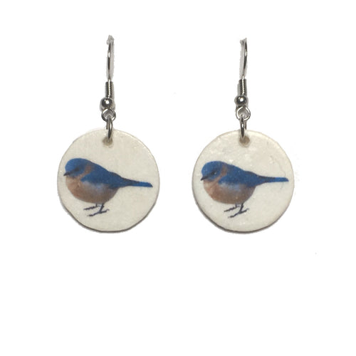 Blue Bird, Bird Image, Backyard Bird, Nature Jewelry, Earrings #E723