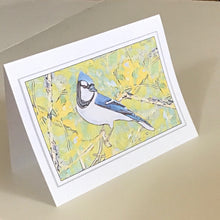 Blue Jay Greeting Cards, 4 Pack, Blue Jay Gift, Birdwatcher Gift, Thinking of You, Miss You, Note Card, Card for Friend #C3